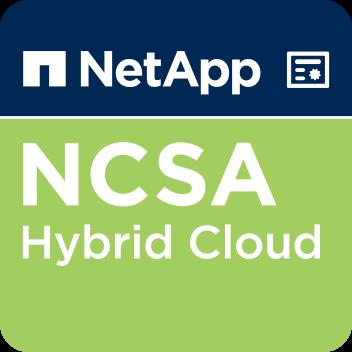https://www.ctgfederal.com/wp-content/uploads/2019/09/netapp-certified-storage-associate-hybrid-cloud.png